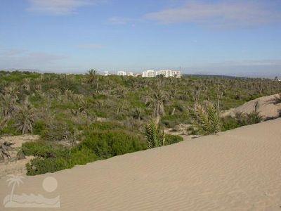 vista de duna 3 de 6